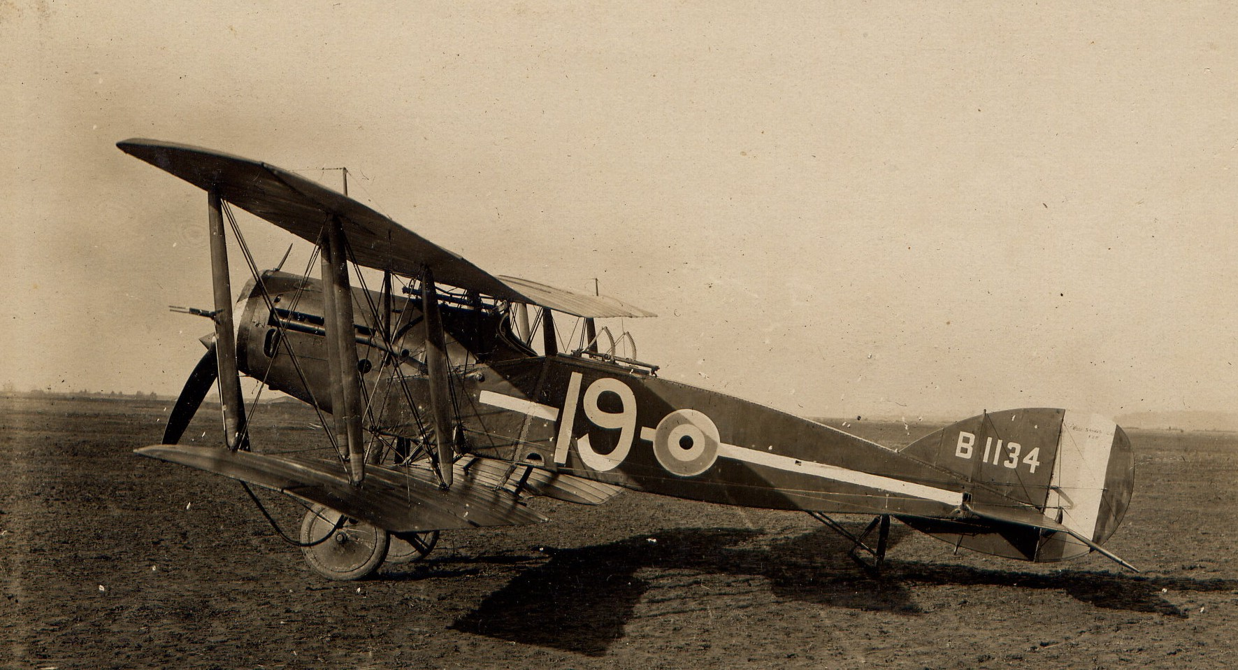 Bristol Fighter [Source White Family]